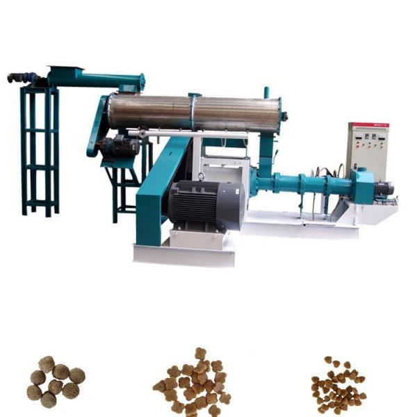 Easy Control Pet Foating Fish Feed Machine Extruder for Cat
